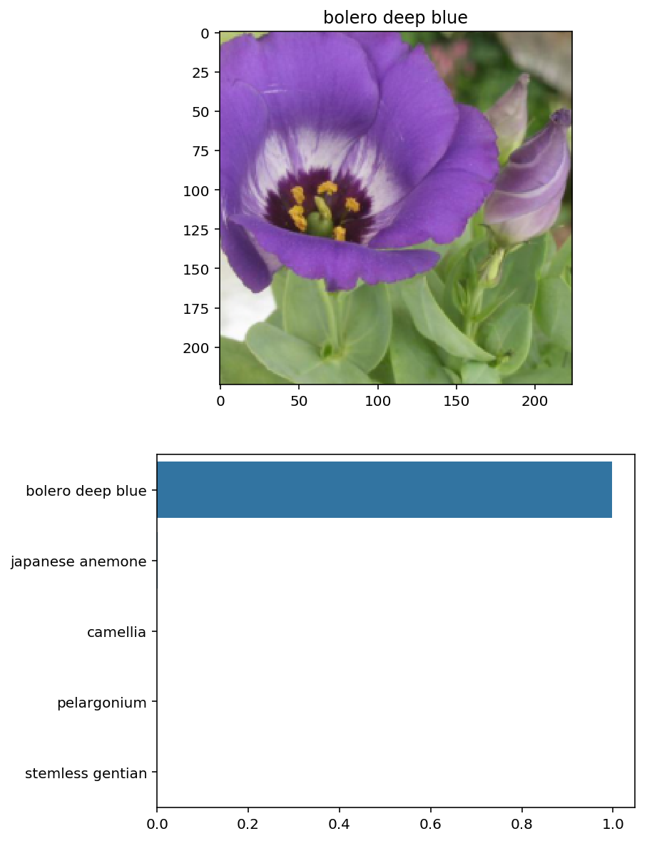 Classifying Flower Species Using Pytorch • HK's Blog